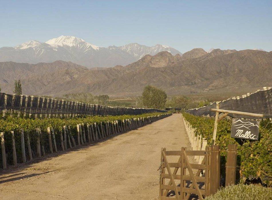 Terrazas De Los Andes Strijden Met De Natuurelementen