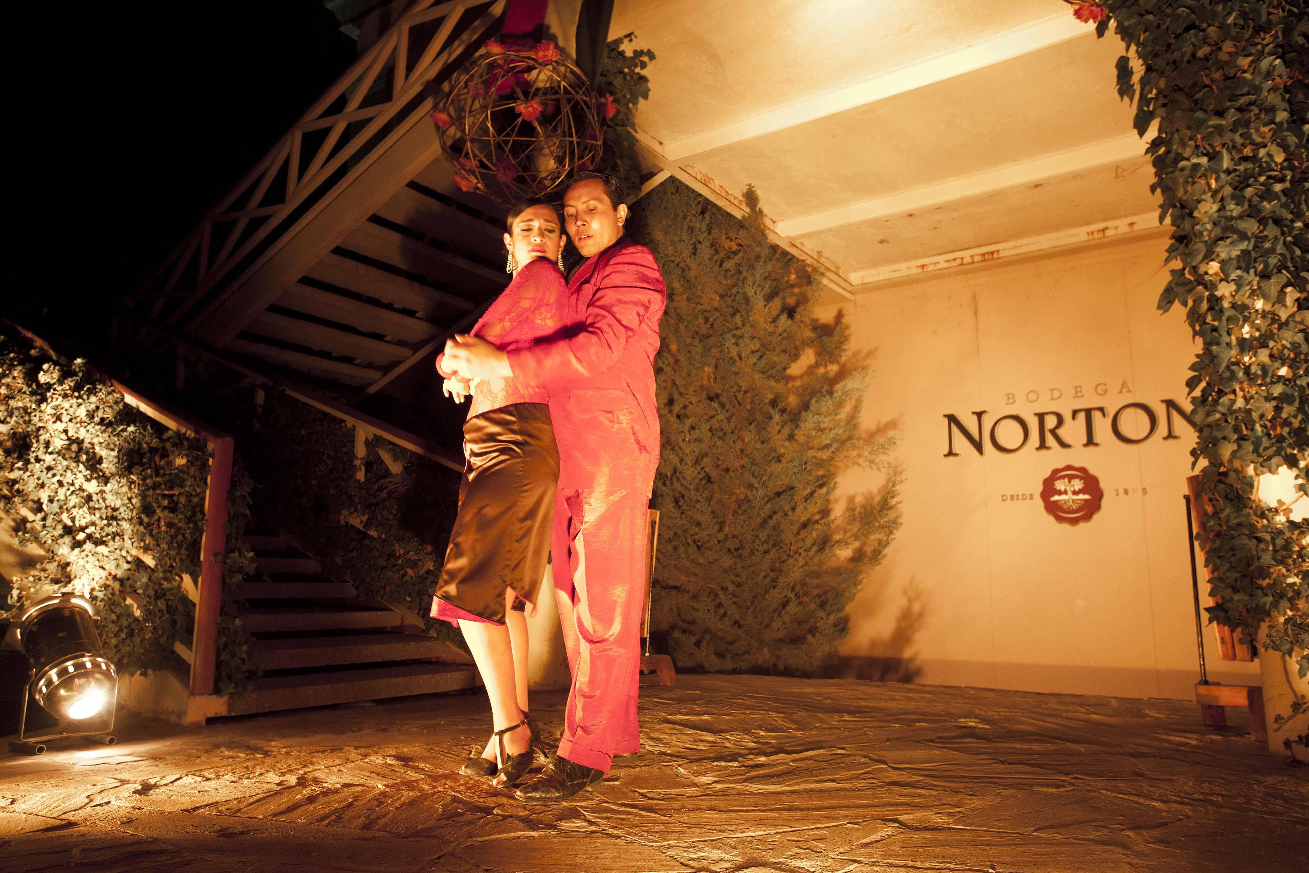 bodega-norton-tango
