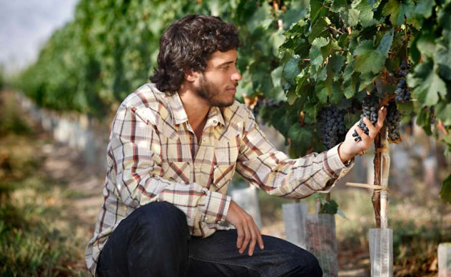Sebastian Zuccardi Argentijnse wijnen